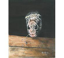 AJA/Oil on canvas Photographic Print