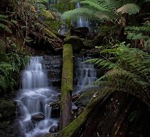 Winter Waterfall by Kelly McGill