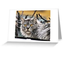 WHAT?!? Greeting Card