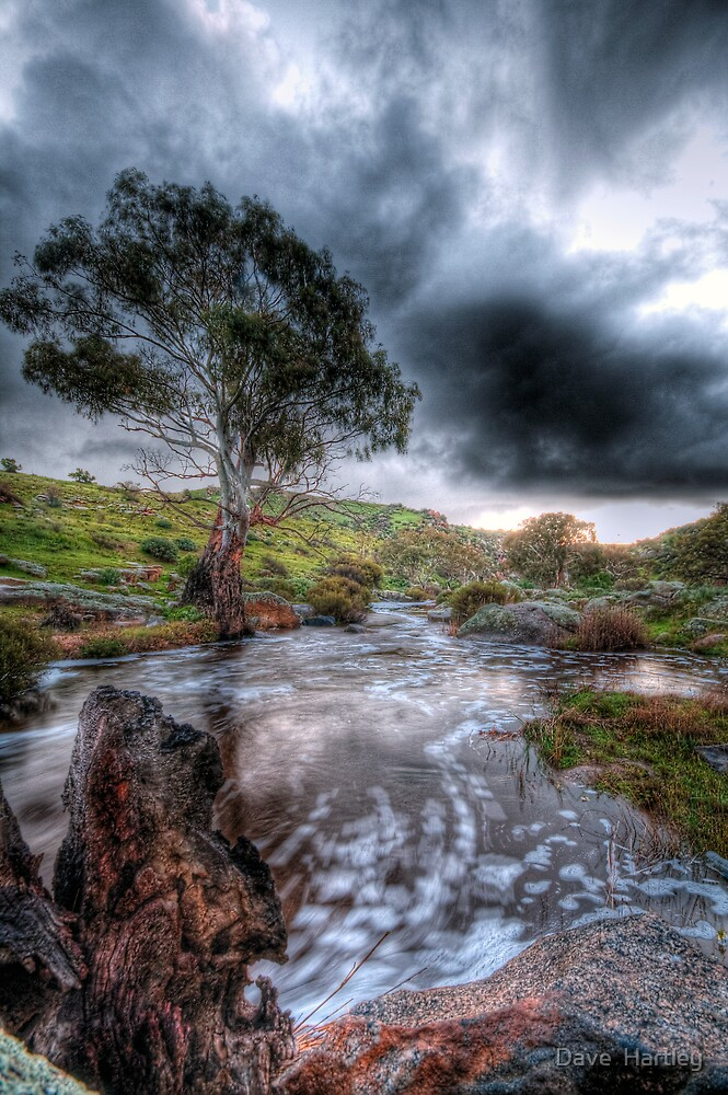 The rain keeps coming...................... by Dave  Hartley