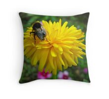 Sunshine Days Throw Pillow