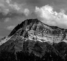 Vimy Mountain by Alyce Taylor