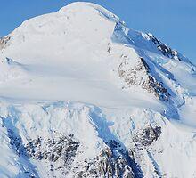 Mt McKinley (Denali) by Joy & Rob Penney