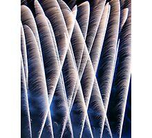 Fireworks 2 Photographic Print