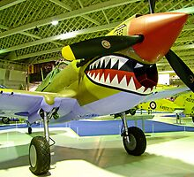 Curtiss Kittyhawk 1V - R.A.F. Museum - Hendon by Colin  Williams Photography