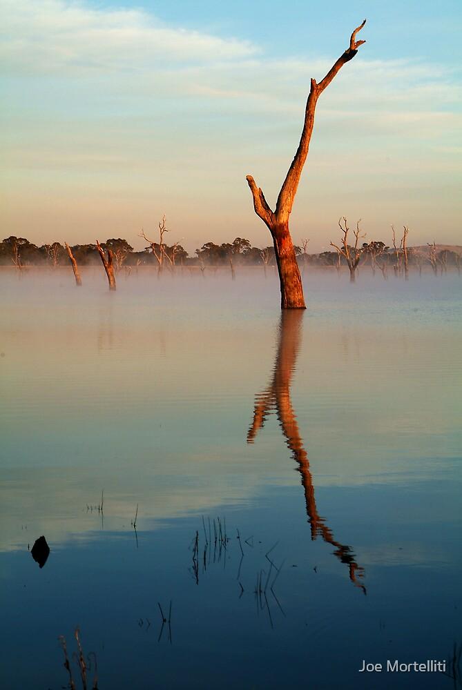 Lake Fyans by Joe Mortelliti