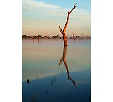Lake Fyans Photographic Print