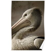 Pelican Pete... Poster