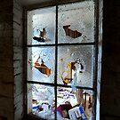 """"""" The Window  """" by helmutk"""
