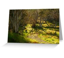 Morning, Dinner Plain Victorian High Country Greeting Card