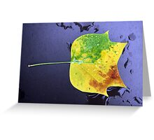 tricolored leaf Greeting Card