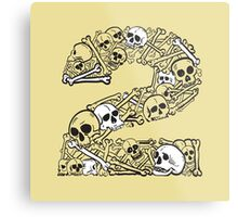 Bones 2 Metal Print