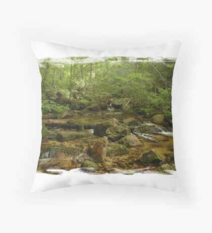 Maine Mountain Stream Throw Pillow