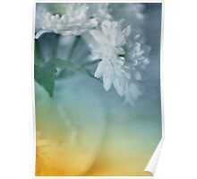Whispery White Vintage in Vase Poster