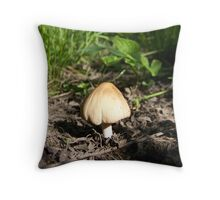 At Ground Level Throw Pillow