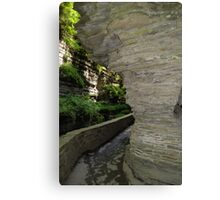 Wall... Canvas Print