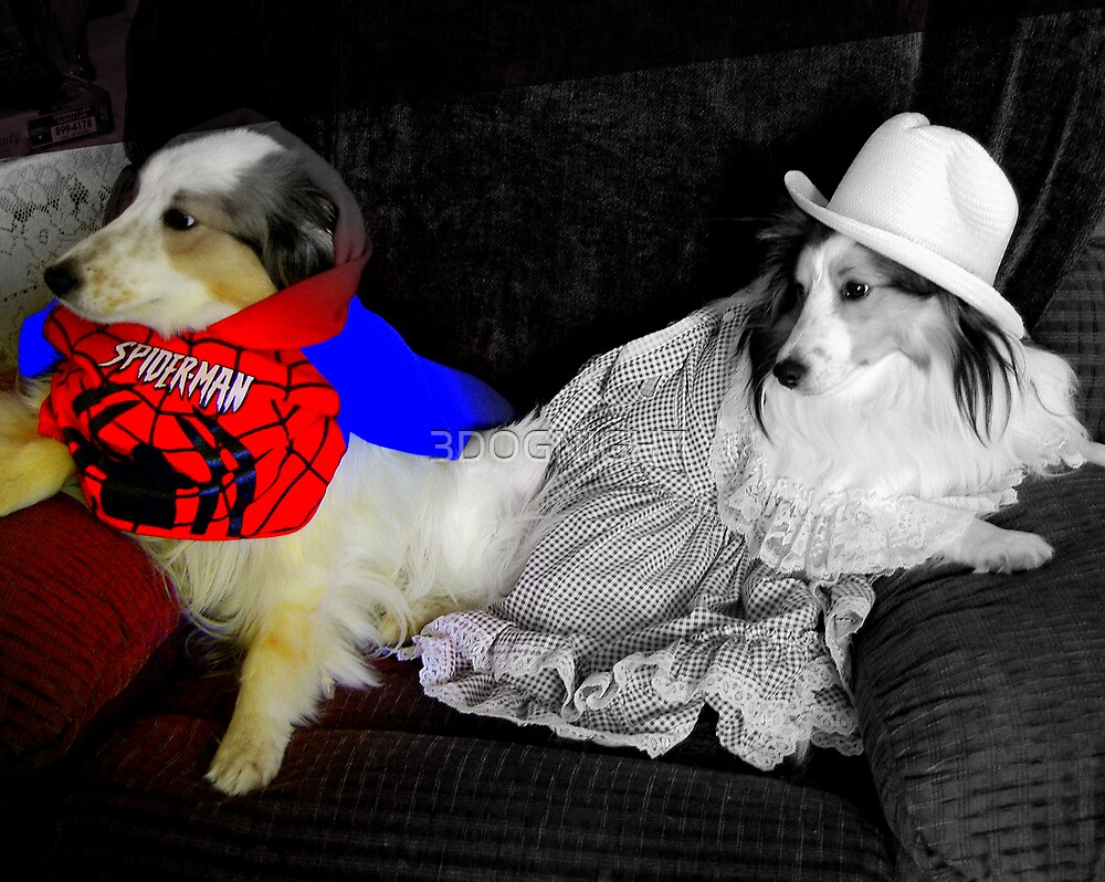 SPIDER MAN AND MOLLIE BROWN by 3DOGNIGHT