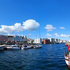 Bergen Fish Market Panorama by averynkh