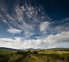Blue Sky Thinking by Northline