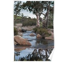 Reedy Creek waterfall Poster