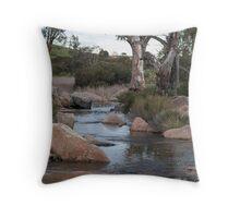 Reedy Creek waterfall Throw Pillow