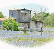 Country Setting by Linda Holloway