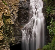 Natural Bridge - Gold Coast Hinterland by Tony Steinberg