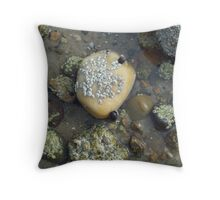 snails and barnacles Throw Pillow