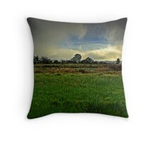 Wetlands (II) Throw Pillow