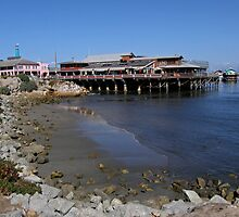 Old Santa Cruz Pier by Patty Boyte