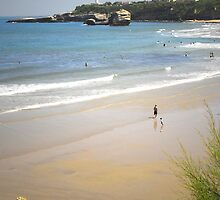 An afternoon at Biarritz beach by triciamary