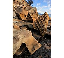 Bruny Island Rock Life 2 Photographic Print