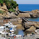 Biarritz harbour by triciamary