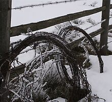 barbed wire in the snow by stampmouse