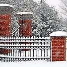 Snowy Entrance  by Monica M. Scanlan