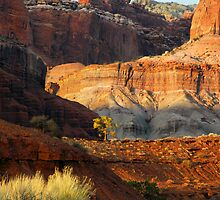 Cascading Cliffs by Fletcher Hill