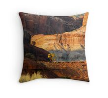 Cascading Cliffs Throw Pillow