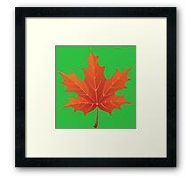 Autumn orange leaf Framed Print