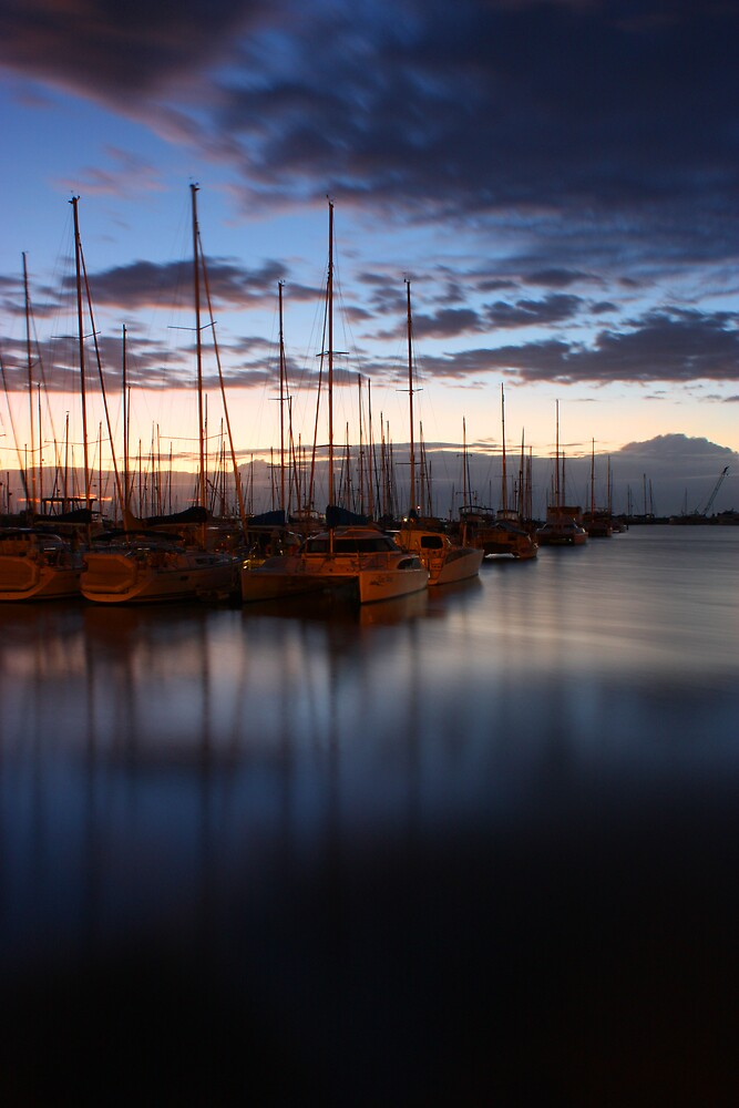 manly harbour by Matt  Williams