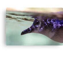 Penguin Underwater Canvas Print
