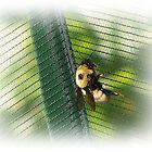 Huge Bee by Jonice