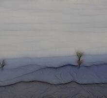 In The Beginning by Anne Smyth