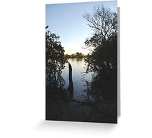 Manning Mangrove Greeting Card