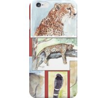 South African Wildlife collection iPhone Case/Skin