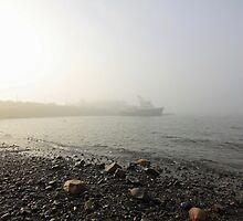 Fog by Rebecca Brann