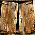 Old Barn Doors by KellyJo