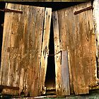 Old Barn Doors by KellyJo