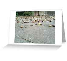 Neem Fruit Greeting Card
