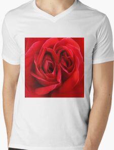 Twin Hearts Mens V-Neck T-Shirt