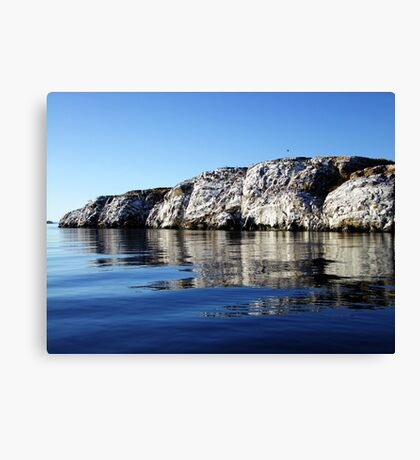 A Rock in the Ocean Canvas Print